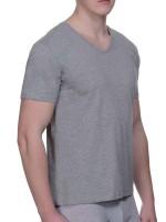 Bruno Banani Pure Cotton: V-Neck-Shirt 2er Pack, grau