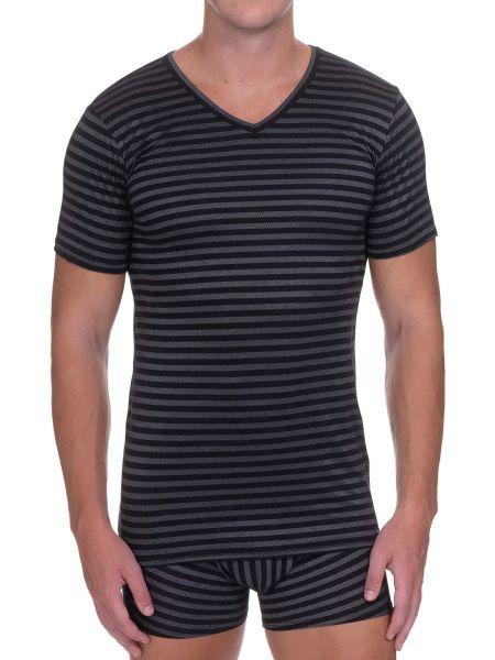 Bruno Banani Globetrotter: V-Neck-Shirt, schwarz/grau