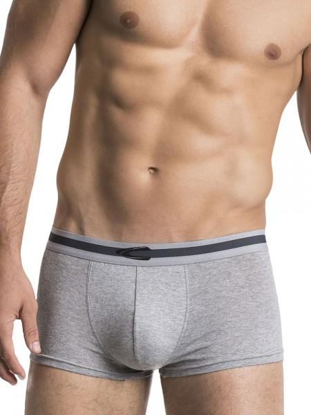 camel active Underwear 20: Pant 2er Pack, grau