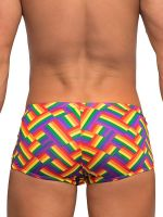 Male Power Pride Fest: Mini Short, bunt