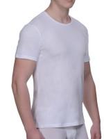 Bruno Banani Pure Cotton: Shirt 2er Pack, weiß