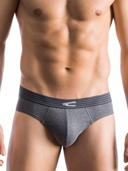 camel active Underwear 31: Brief, grau