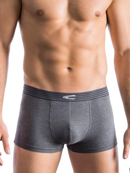 camel active Underwear 31: Pant, grau