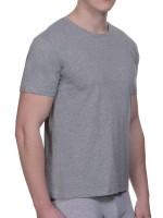 Bruno Banani Pure Cotton: Shirt 2er Pack, grau