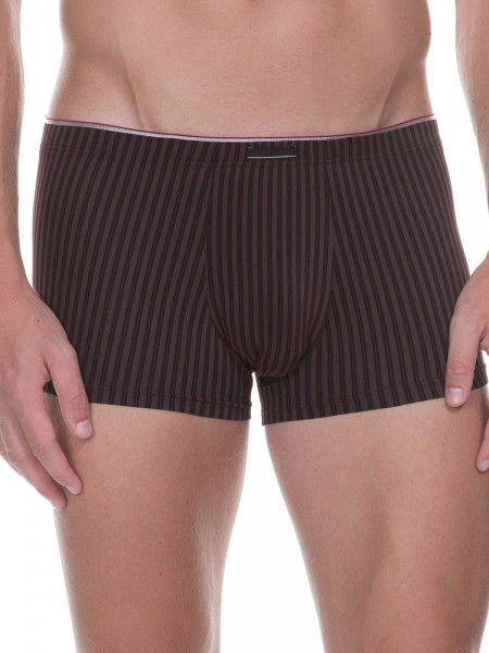 Bruno Banani Hair Stripes: Hipshort, bordeaux