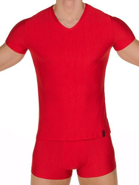 Bruno Banani Straight Line: V-Shirt, rot/schwarz